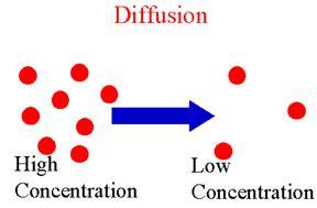 Diffusion & Osmosis Lab - AP BIo